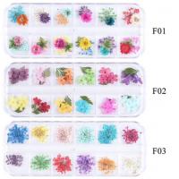 Декорация сухи цветя - 12 броя комплект